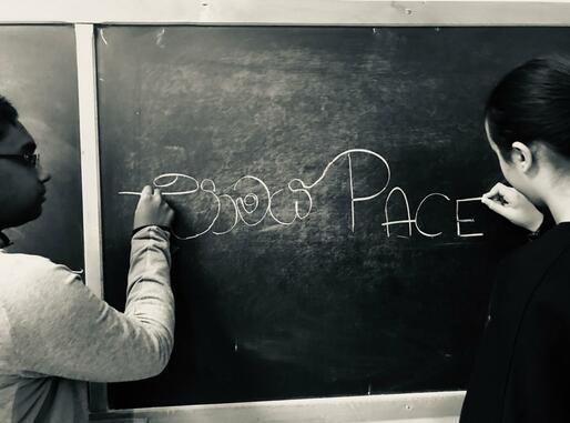 Diritti Umani e Pace: dalle Scuole alla Città, dalla conoscenza all'azione
